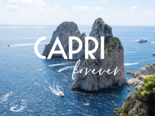 Robert Marc Capri Collection